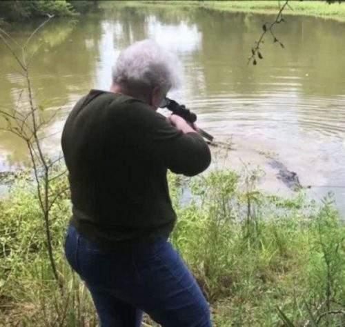 Пенсионерка застрелила крокодила