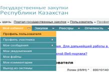 Государственные закупки республики Казахстан